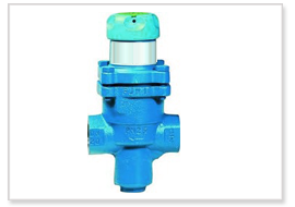 Bellow Type Reducing Valves