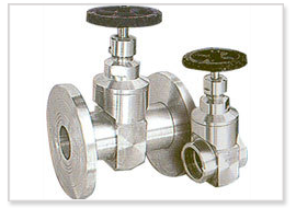 S.S. Bar Stock Gate Valve