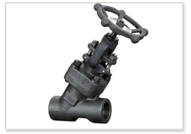 Y Type Bellow Sealed Globe Valve